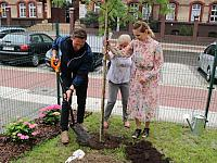 Region bardziej zielony. Więcej drzew, aktywności społecznej i działań dla środowiska.